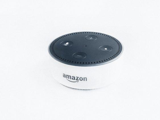 Sprachgesteuerte Suche über Amazon Alexa